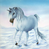 Unicorn-Winter